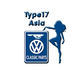 Type17 - Asia
